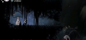 Hollow Knight frame 5